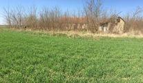 Farmos, eladó, birtokközpont építéséhez alkalmas kivett tanya és közel 2,5 ha szántó és rét